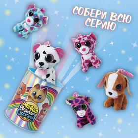 Мягкая игрушка-сюрприз «Коллекция: животные»