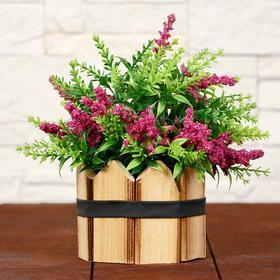 "Bonsai ""Sprigs of lilac"" 10x17 cm mix"