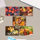"Pocket calendar ""Fruits"" 2021, 7 x 10 cm, MIX"