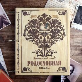 """Родословная книга """"Летопись моей семьи"""", 20 х 25 см"""