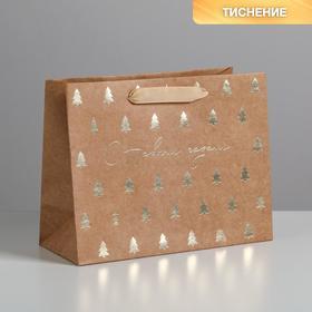 Пакет крафтовый горизонтальный «Ёлочки», MS 23 × 18 × 10 см