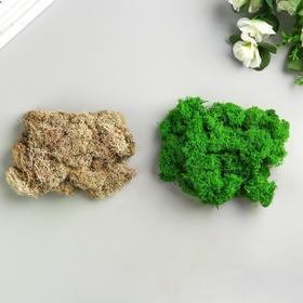 """Мох стабилизированный 2 в 1 """"Зелёный и белый """" 100 гр."""