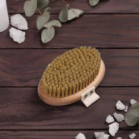Massage brush for dry massage, natural bristles, WITHOUT HANDLE, with strap, coated