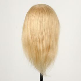 Head training blond 100% natural hair 30 cm