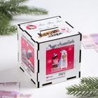 "Piggy Bank wooden Christmas ""Hoarding likes"""