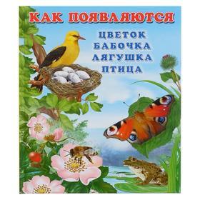 Как появляются цветок,бабочка,лягушка,птица
