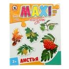 Макси-пазлы «Листья деревьев»