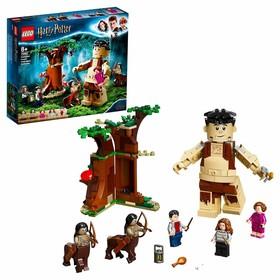 Конструктор Lego Harry Potter «Запретный лес: Грохх и Долорес Амбридж»