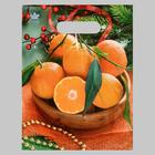 """Package """"Lots of oranges"""", plastic with die-cut handle, 30х23 cm, 30 µm"""