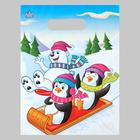 """The Penguins and the polar bear"", plastic with die-cut handle, 30х23 cm, 30 µm"