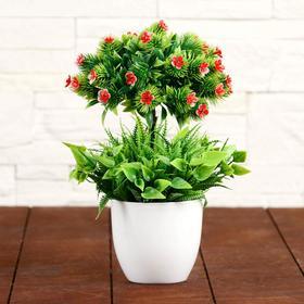 """Bonsai flower Tree"" 10x25 cm mix"