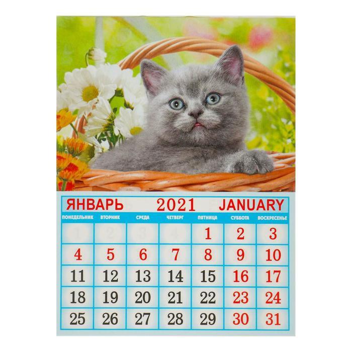 Календарь с фото на магните отрывной спб написано