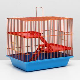 "Cage for rodents ""Grizzly bear 3"" plastic.shelves 40 x 30 x 50 cm, blue/orange"