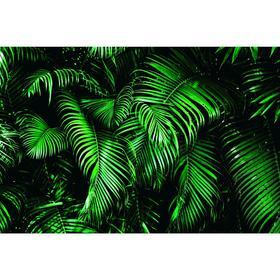 Фотобаннер, 300 × 200 см, с фотопечатью, люверсы шаг 1 м, «Зелёные листья»