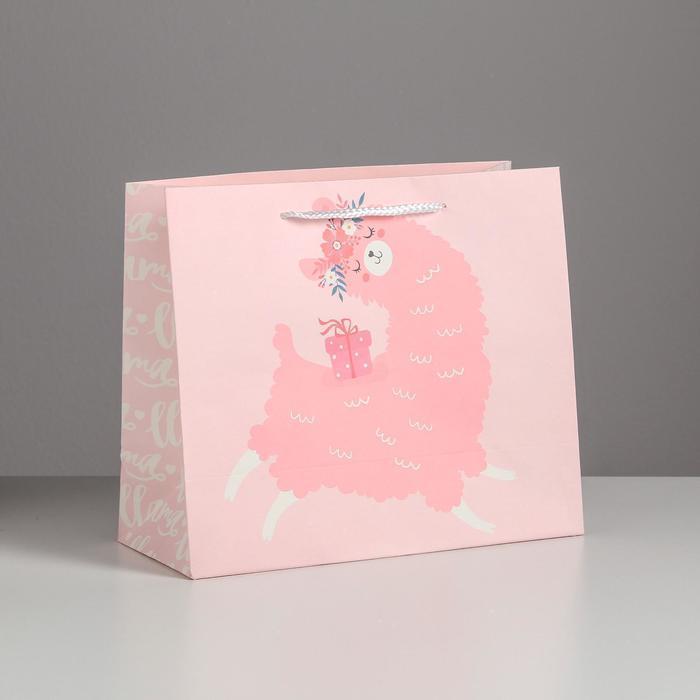Пакет подарочный Lama, 27 х 23 х 11,5 см