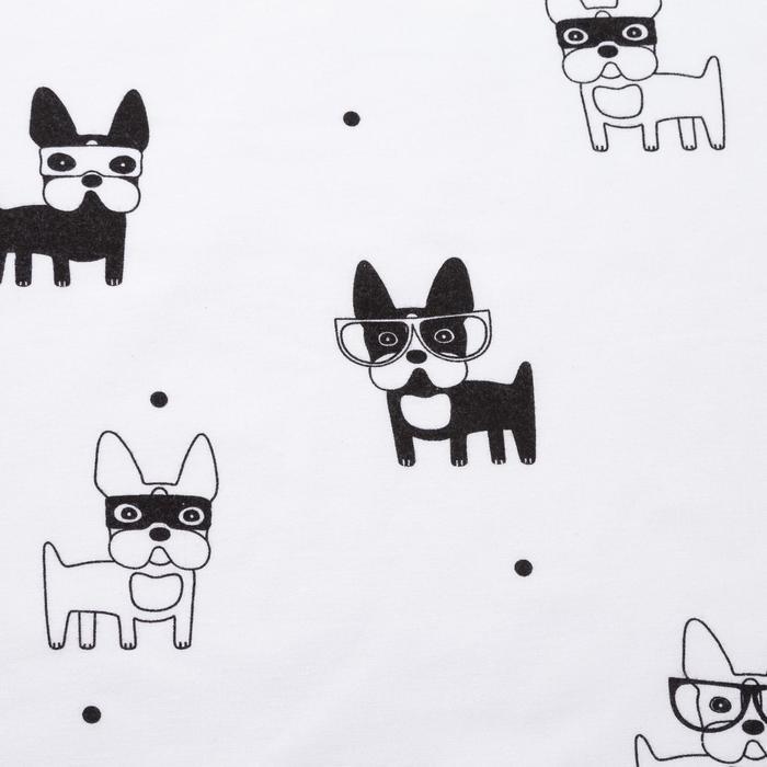 Фланель «Модные собачки» ширина 150 см, длина 10 м