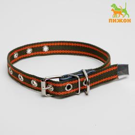 Ошейник брезентовый щенячий однослойный, 50 х 2 см,  ОШ до 35 см, хаки/оранжевый