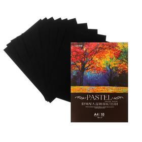 Бумага для пастели набор, А4, deVENTE, 10 листов, 160 г/м², чёрная, в пакете