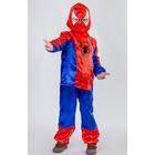 """Карнавальный костюм """"Паук"""", 3 предмета: рубашка, брюки, маска. Рост 134 см  85025"""