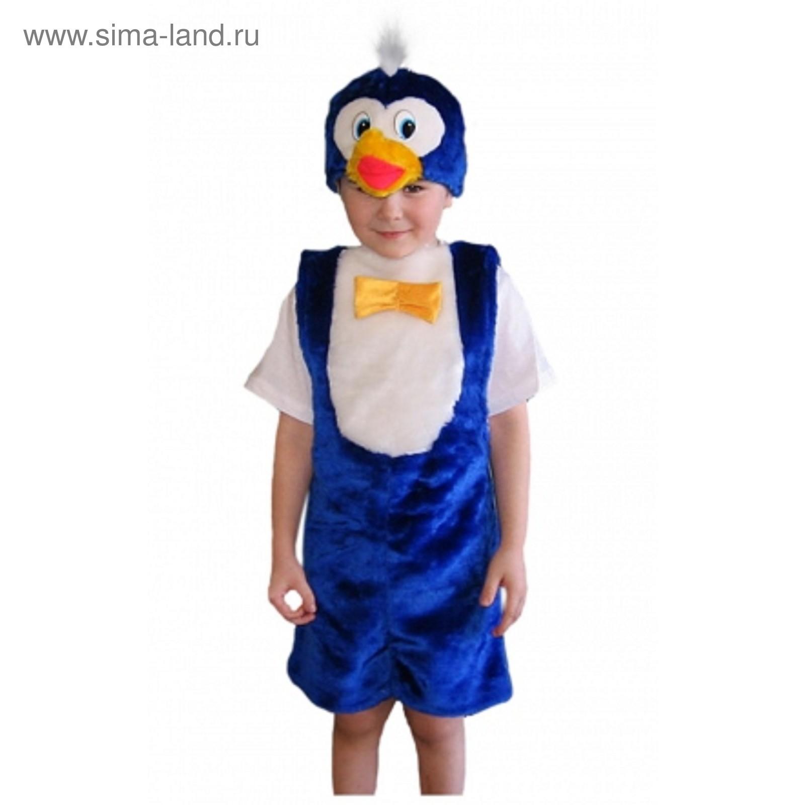 e764a7bf51b6 Детский карнавальный костюм