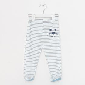 Ползунки детские, цвет голубой/полоска, рост 62 см