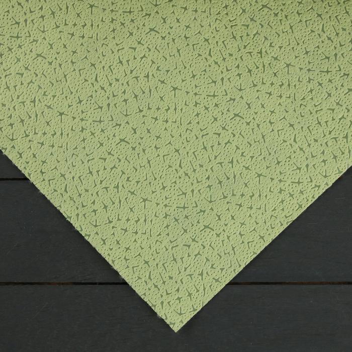 Материал укрывной, 1,6 × 12 м, плотность 100, с УФ-стабилизатором, фисташковый, «Спанграм Зима»