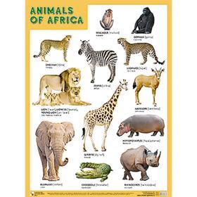 Плакаты (англ). ANIMALS OF AFRICA (Животные Африки)