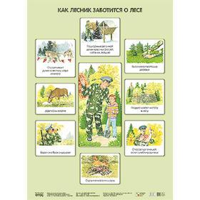 Плакат. Как лесник заботится о лесе, Николаева С. Н.