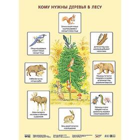 Плакат. Кому нужны деревья в лесу, Николаева С. Н.