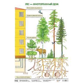 Плакат. Лес — многоэтажный дом, Николаева С. Н.