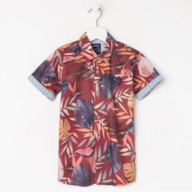 Рубашка для мальчика с коротким рукавом, цвет бордо, рост 116 ( 6 лет)
