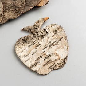 A set of decorative elements from the bark of the tree