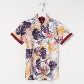 Рубашка для мальчика с коротким рукавом, цвет молочный, рост 116 см ( 6 лет)