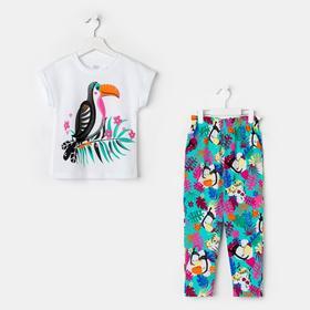 Комплект для девочки (футболка/лосины) Симба, рост 104 см