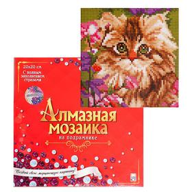 Diamond. mosaic class. 20x20 cm, with additional, with full fill. 19 col. KITTEN IN COLORS AC20019