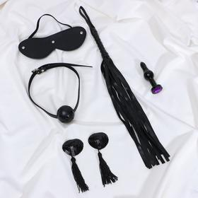 Erotic set: mask, gag, pasties, whip, + gift
