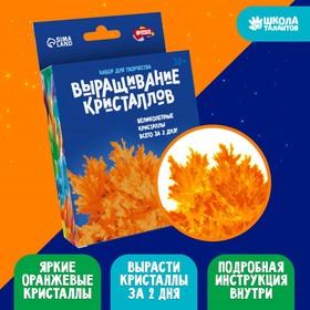 Набор для выращивания кристалла «Опыты. Лучистые кристаллы», цвет оранжевый