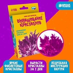 Набор для творчества «Лучистые кристаллы», цвет фиолетовый