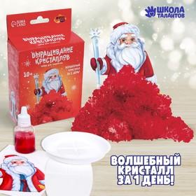Набор для творчества «Лучистые кристаллы»: Дед Мороз, цвет красный