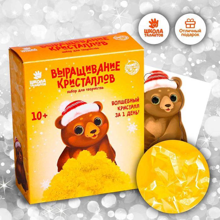 Набор для творчества «Лучистые кристаллы»: Медвежонок в колпачке, цвет жёлтый - фото 105690165