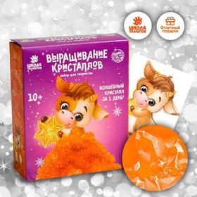 Набор для творчества «Лучистые кристаллы»: Телёнок, цвет оранжевый