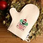 """Bath mittens with embroidery """" Cool New year!"""""""