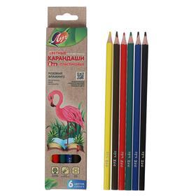 Цветные карандаши 6 цветов ZOO, пластиковые, шестигранные