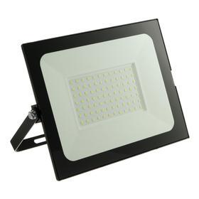 Прожектор светодиодный düwi colorbox, 100 Вт, 6500 К, 8000 Лм, IP65, цветная коробка