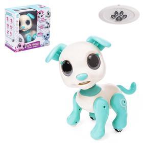 Робот-питомец радиоуправляемый «Собака», световые и звуковые эффекты, цвет белый Ош