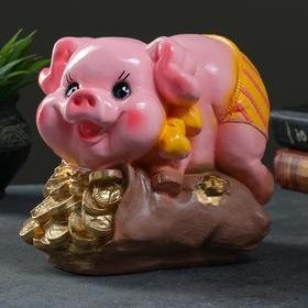 """Копилка """"Свинка на мешке"""" розовая, 20х15х21см"""