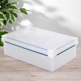 Короб для хранения с крышкой «Моно», 31×20×11 см, цвет прозрачный