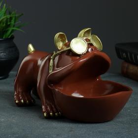 """Шкатулка для мелочей """"Бульдог"""" 16х27см, молочный шоколад"""