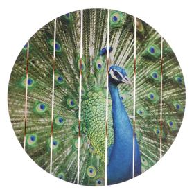 "Painting on a tree ""Peacock"" 40x40 cm"