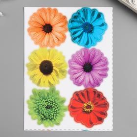 """Наклейки Decoretto """"Разноцветные цветы"""" 17х23 см"""